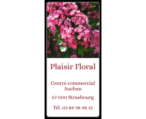 Plaisir Floral