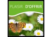 Plaisir d'Offrir Fleurs et Papillons