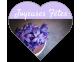 """Étiquettes """"Joyeuses Fêtes"""" forme coeur multi-usages"""